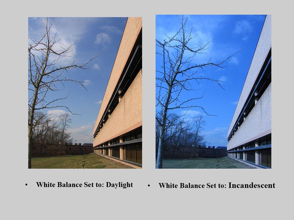 White Balance Set to: Daylight White Balance Set to: Incandescent