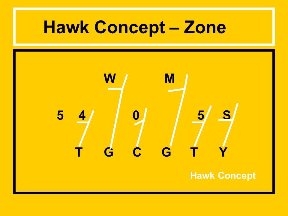 Hawk Concept – Zone W M 5 40 5 S TGCGTY Hawk Concept