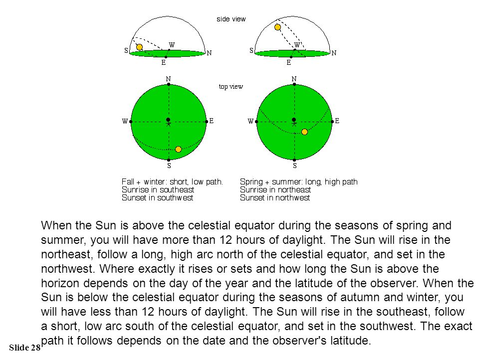 Slide 28 When the Sun is above the celestial equator during the seasons of spring and summer, you will have more than 12 hours of daylight. The Sun wi
