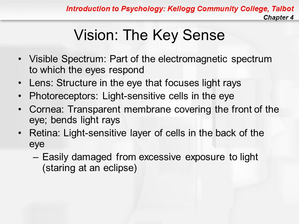 Introduction to Psychology: Kellogg Community College, Talbot Chapter 4 Figure 4.3 FIGURE 4.3 The visible spectrum.