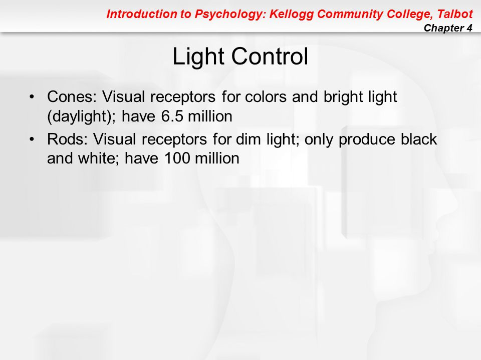 Introduction to Psychology: Kellogg Community College, Talbot Chapter 4 Perception: Some Key Terms Size Constancy: Perceived size of an object remains the same, DESPITE changes in its retinal image Native Perception: A perceptual experience based on innate processes Empirical Perception: A perception based on prior experience Shape Constancy: The perceived shape of an object unaffected by changes in its retinal image Brightness Constancy: Apparent brightness of an object stays the same under changing lighting conditions