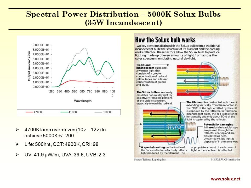Spectral Power Distribution – 5000K Solux Bulbs (35W Incandescent)  4700K lamp overdriven (10v – 12v) to achieve 5000K +/- 200  Life: 500hrs, CCT: 4900K, CRI: 98  UV: 41.9 µW/lm, UVA: 39.6, UVB: 2.3 www.solux.net