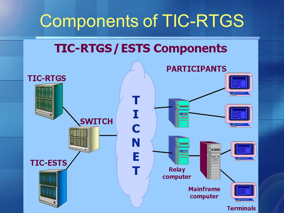 Components of TIC-RTGS