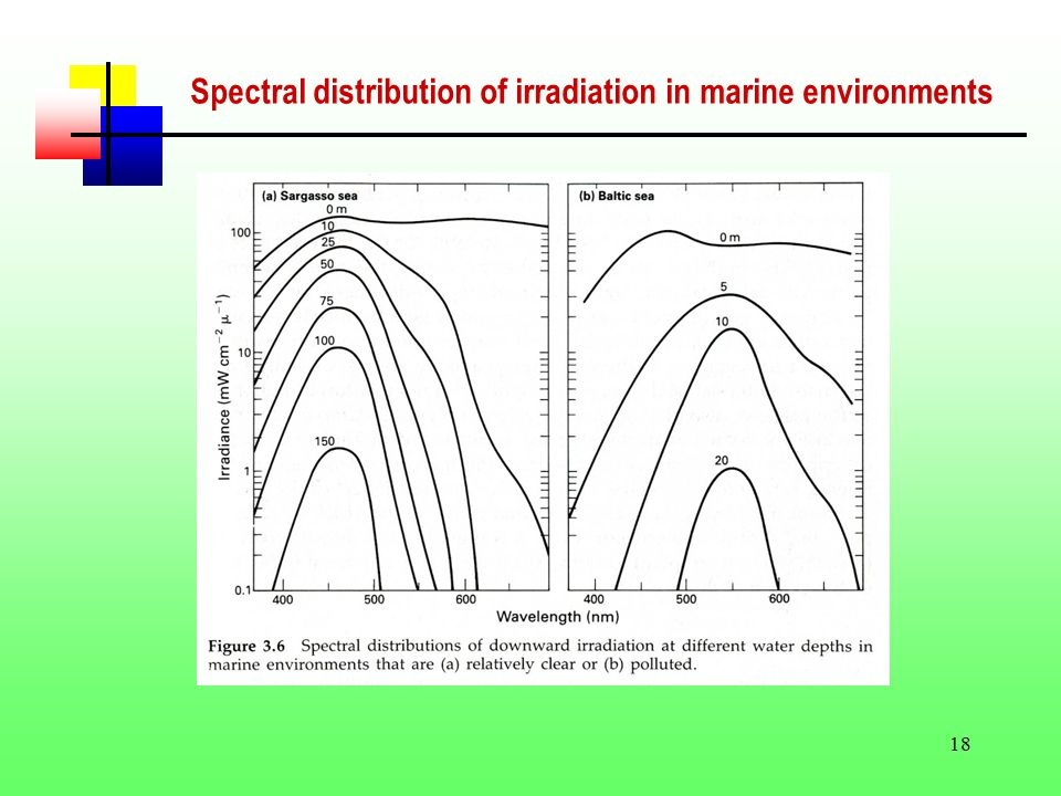 18 Spectral distribution of irradiation in marine environments