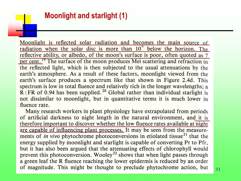 31 Moonlight and starlight (1)