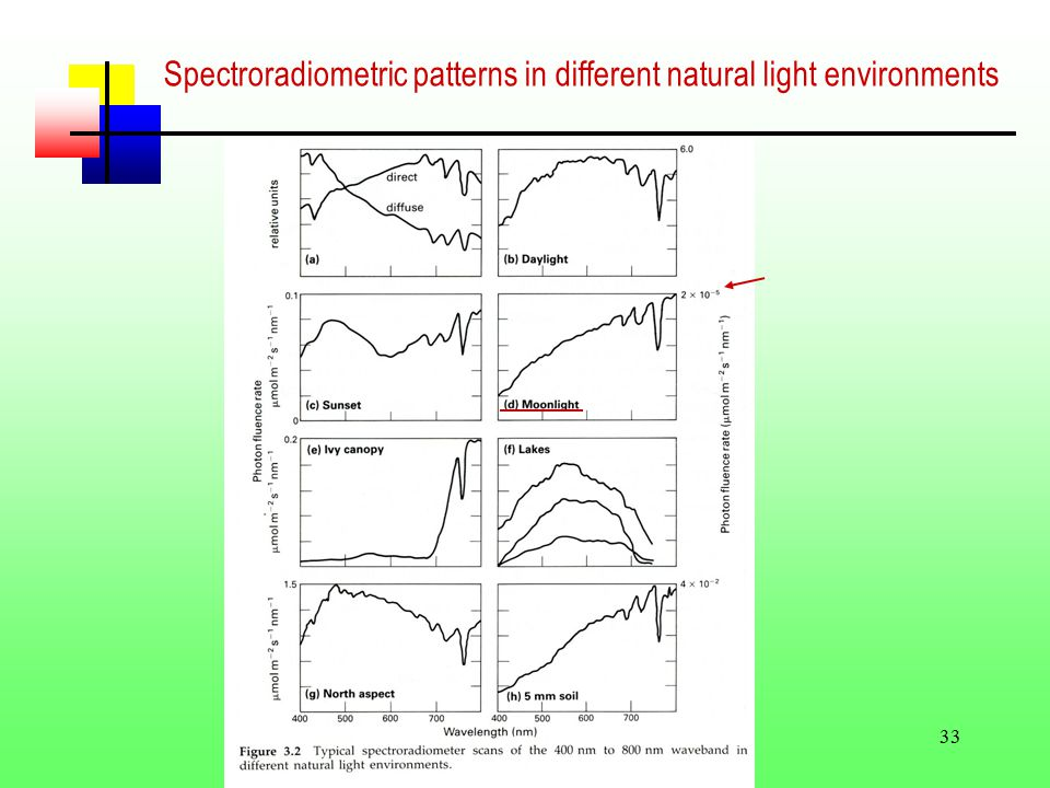 33 Spectroradiometric patterns in different natural light environments