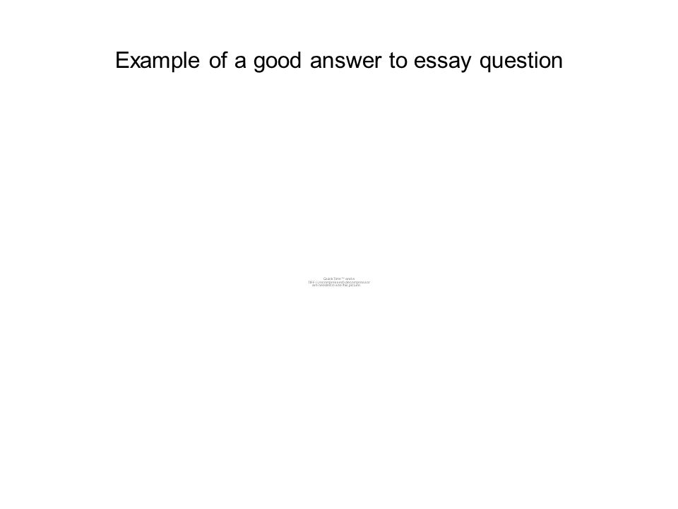Example of a good answer to essay question