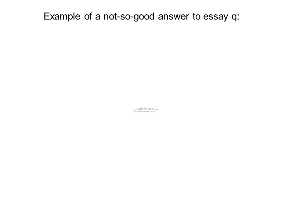 Example of a not-so-good answer to essay q: