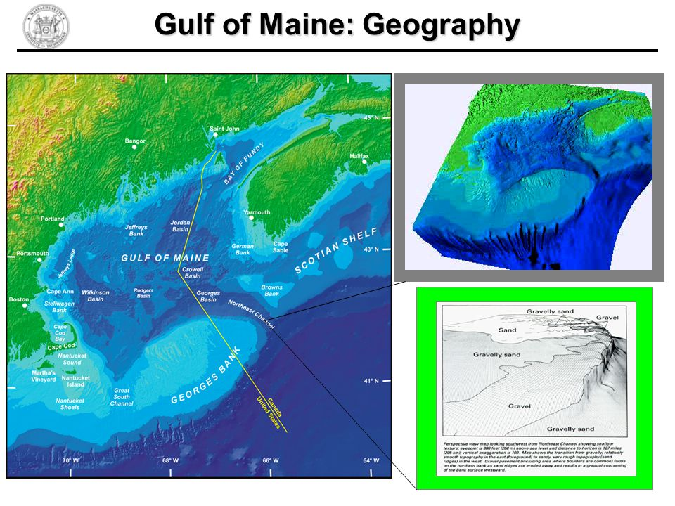 Gulf of Maine: Geography