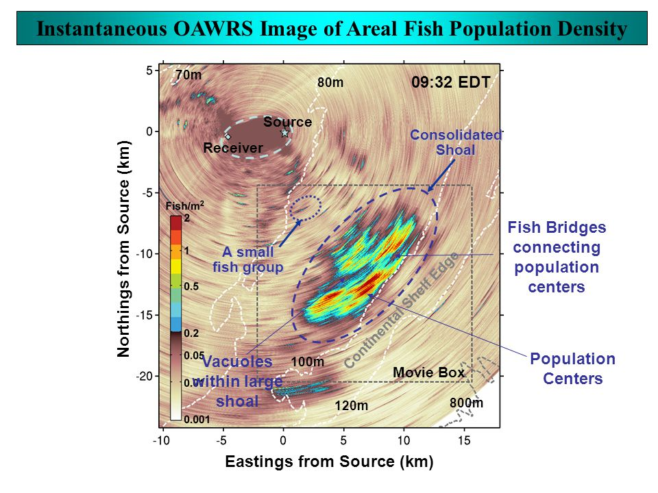 Movie Box Source Receiver A small fish group Continental Shelf Edge ConsolidatedShoal 80m 70m 100m 120m 800m Eastings from Source (km) Northings from Source (km) 09:32 EDT Vacuoles within large shoal Fish Bridges connecting population centers Population Centers Instantaneous OAWRS Image of Areal Fish Population Density