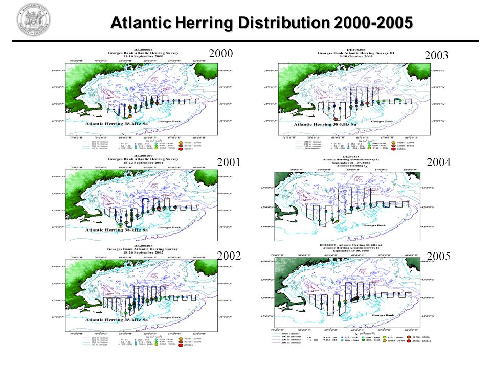 2000 2001 2002 2003 2004 2005 Atlantic Herring Distribution 2000-2005