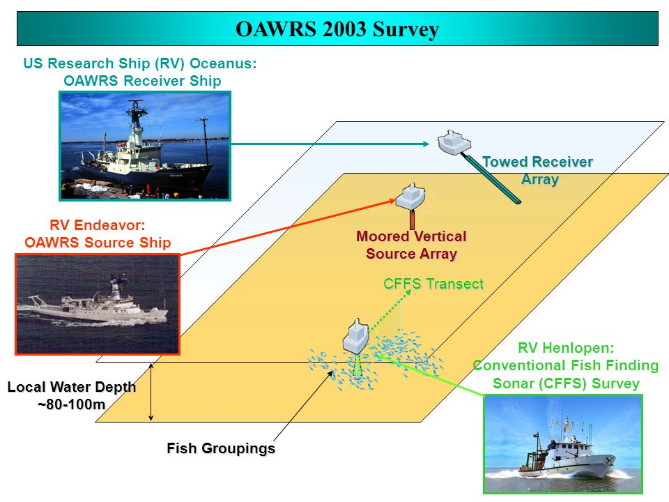 US Research Ship (RV) Oceanus: OAWRS Receiver Ship RV Endeavor: OAWRS Source Ship OAWRS 2003 Survey Fish Groupings Moored Vertical Source Array Towed Receiver Array RV Henlopen: Conventional Fish Finding Sonar (CFFS) Survey CFFS Transect Local Water Depth ~80-100m