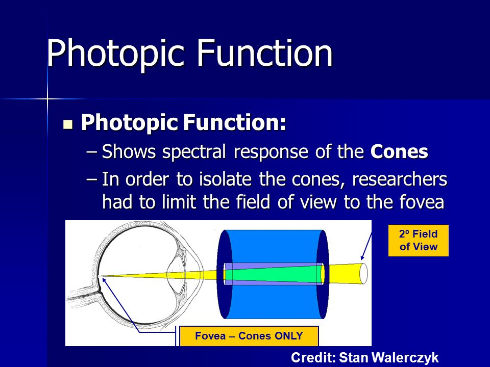 Photopic Function: Photopic Function: –Shows spectral response of the Cones –In order to isolate the cones, researchers had to limit the field of view to the fovea Photopic Function 2º Field of View Fovea – Cones ONLY Credit: Stan Walerczyk