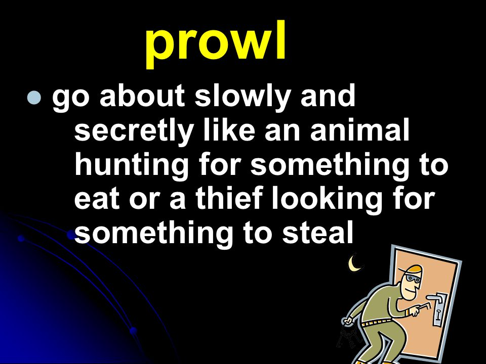 prowl go about slowly and secretly like an animal hunting for something to eat or a thief looking for something to steal