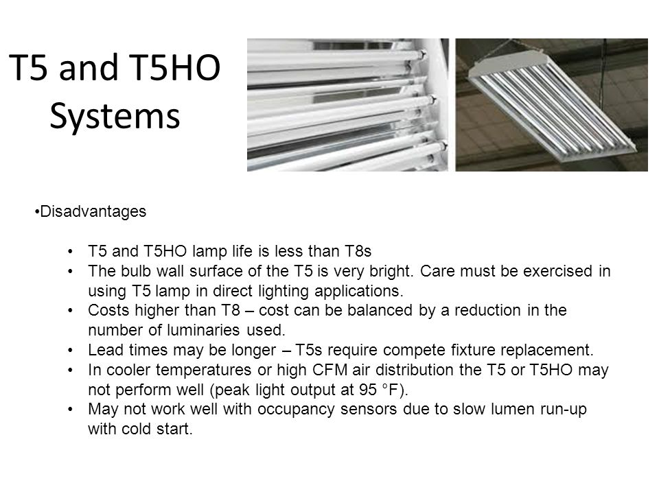 T5 and T5HO Systems Disadvantages T5 and T5HO lamp life is less than T8s The bulb wall surface of the T5 is very bright. Care must be exercised in usi