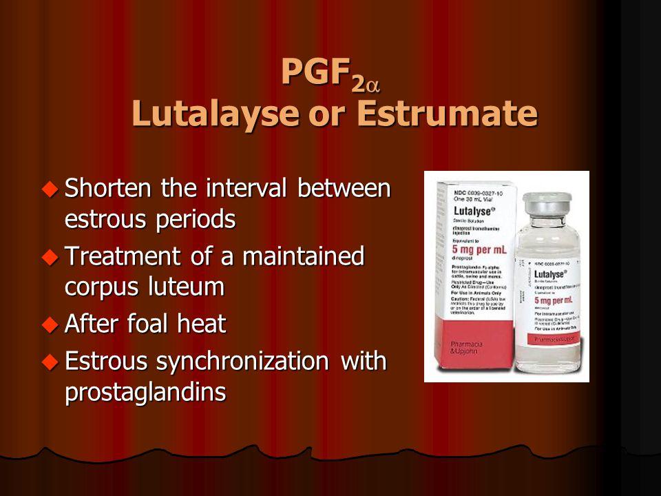 PGF 2  Lutalayse or Estrumate u Shorten the interval between estrous periods u Treatment of a maintained corpus luteum u After foal heat u Estrous sy
