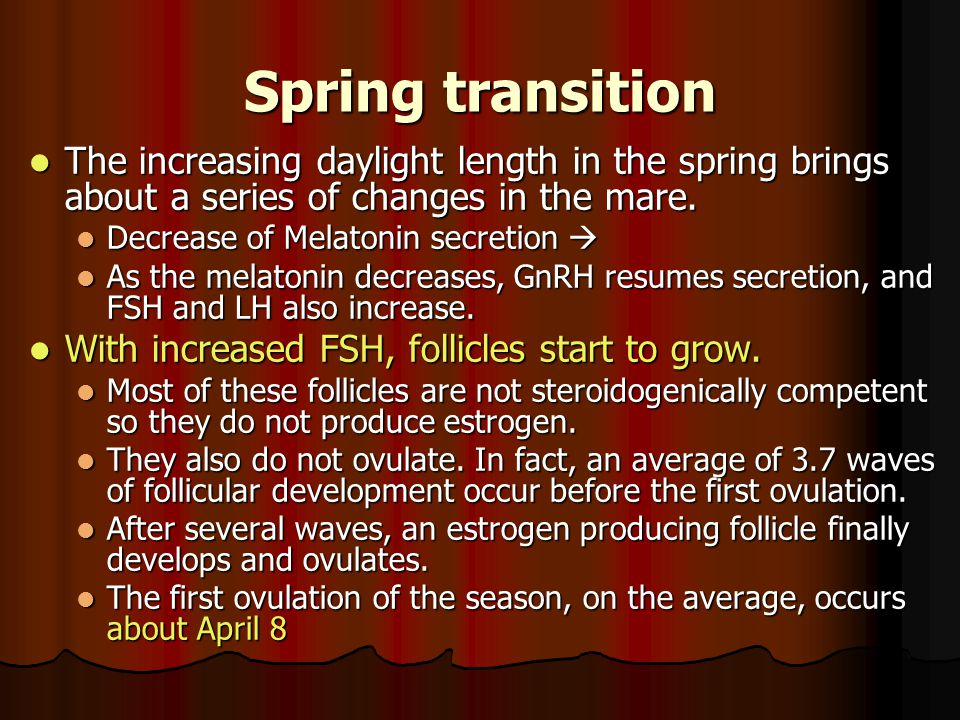 Spring transition The increasing daylight length in the spring brings about a series of changes in the mare.