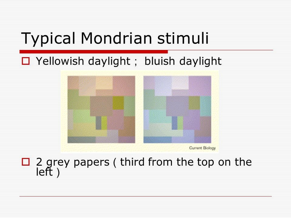 Typical Mondrian stimuli  Yellowish daylight ; bluish daylight  2 grey papers ( third from the top on the left )