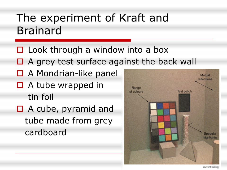 The experiment of Kraft and Brainard  Look through a window into a box  A grey test surface against the back wall  A Mondrian-like panel  A tube wrapped in tin foil  A cube, pyramid and tube made from grey cardboard