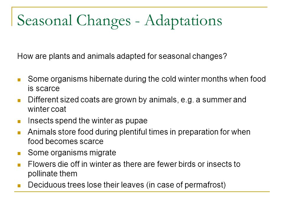 Seasonal Changes - Adaptations How are plants and animals adapted for seasonal changes.