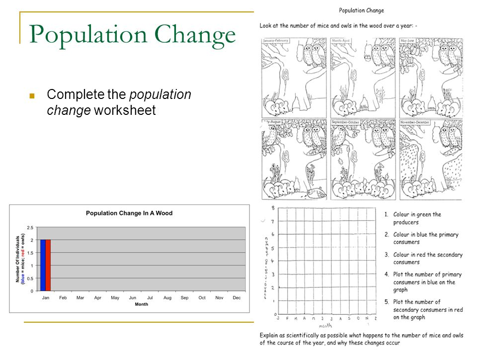 Population Change Complete the population change worksheet