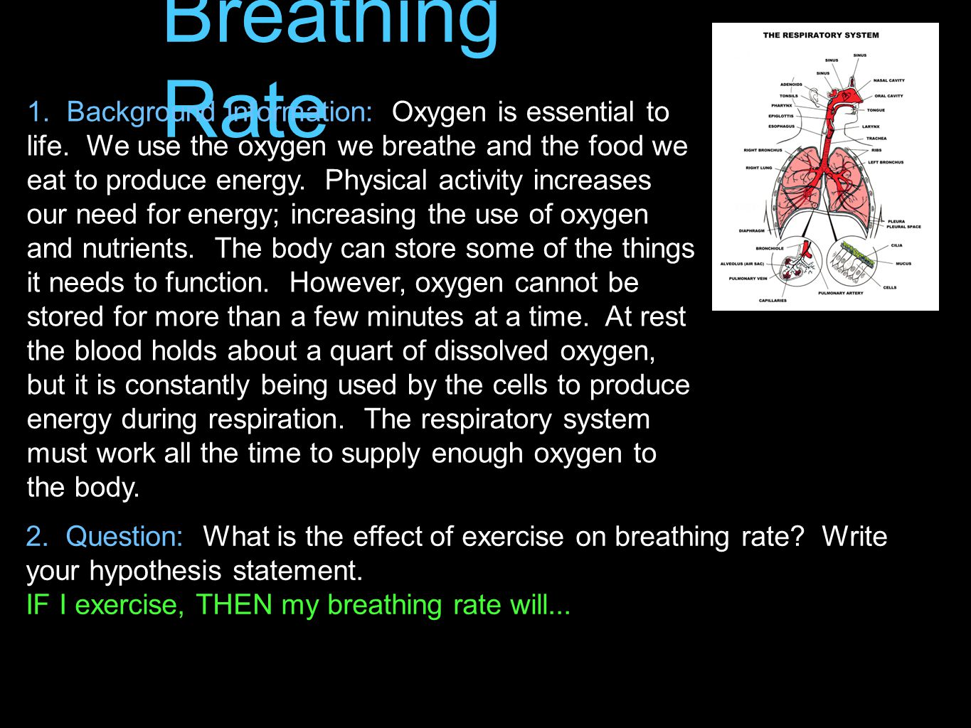 1. Background Information: Oxygen is essential to life. We use the oxygen we breathe and the food we eat to produce energy. Physical activity increase