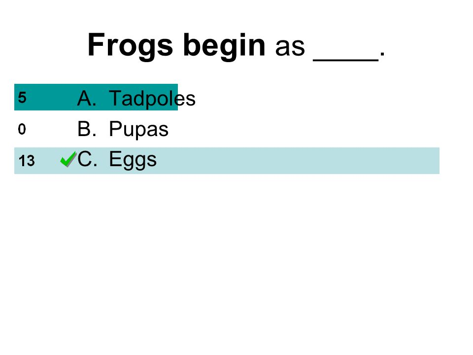 Frogs begin as ____. A.Tadpoles B.Pupas C.Eggs