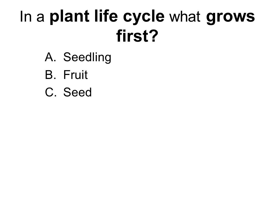 In a plant life cycle what grows first? A.Seedling B.Fruit C.Seed