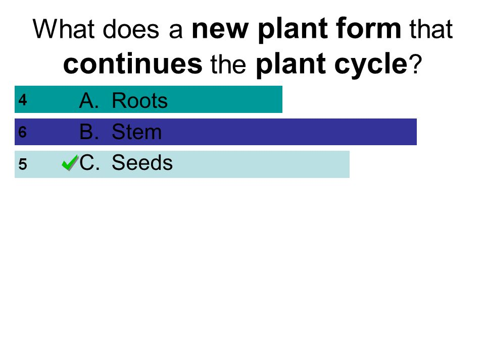 What does a new plant form that continues the plant cycle ? A.Roots B.Stem C.Seeds