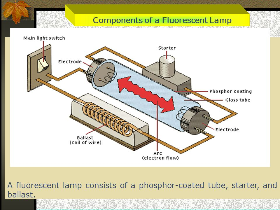 Components of a Fluorescent Lamp A fluorescent lamp consists of a phosphor-coated tube, starter, and ballast.