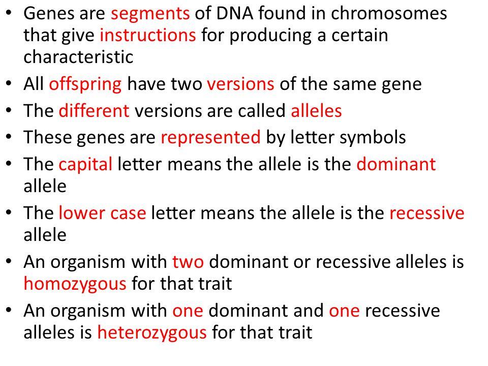 Genes Influence Traits