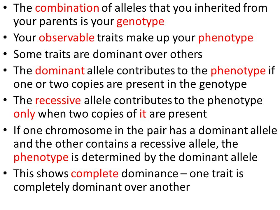 Many Genes/One Trait Many Traits/One Gene