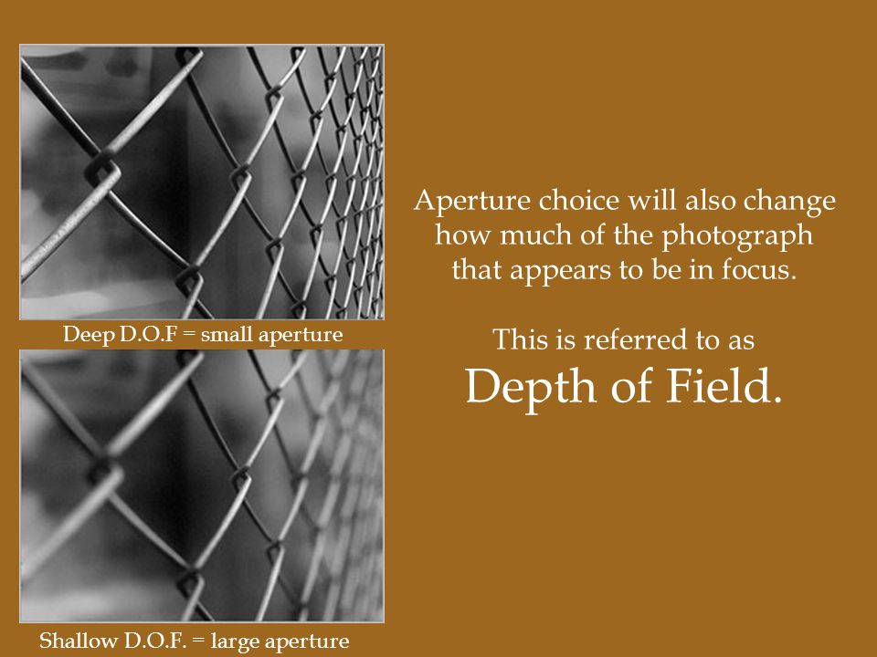 Aperture choice will also change how much of the photograph that appears to be in focus.