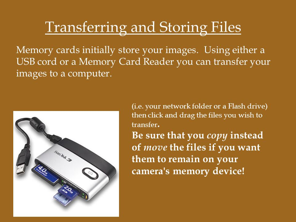 Memory cards initially store your images.