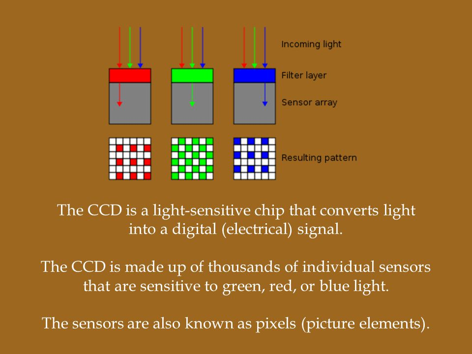 The CCD is a light-sensitive chip that converts light into a digital (electrical) signal. The CCD is made up of thousands of individual sensors that a