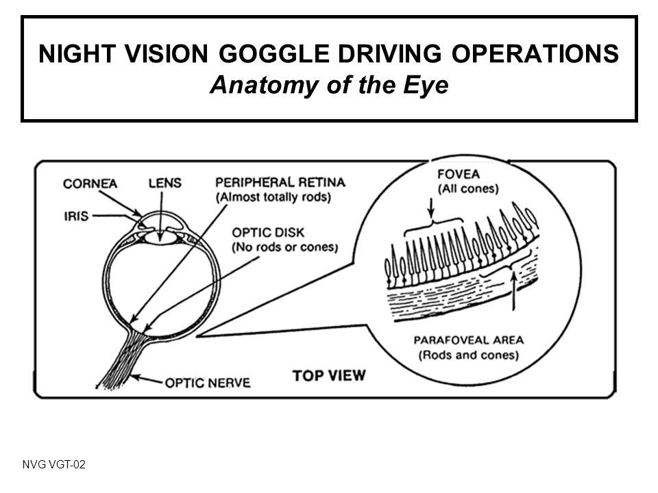 NIGHT VISION GOGGLE DRIVING OPERATIONS General Characteristics NVG VGT-13 Single-color Viewing Monochromatic Adaptation Dark Adaptation Spatial Disorientation