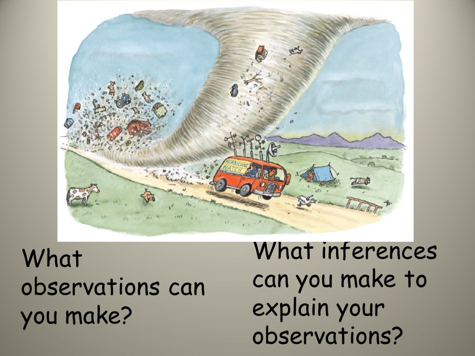 What observations can you make about the picture? What inferences can you make to explain your observations?
