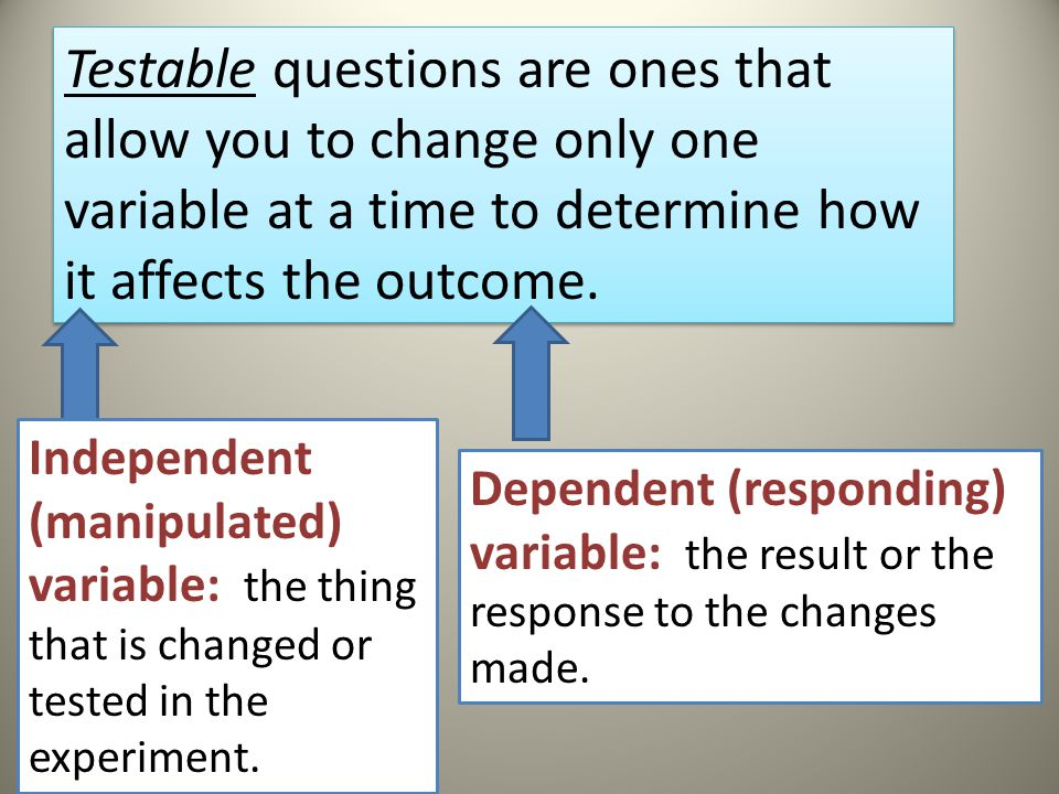 Testable Question Practice (Posing a question) Identify 5 testable questions and 5 non-testable questions.