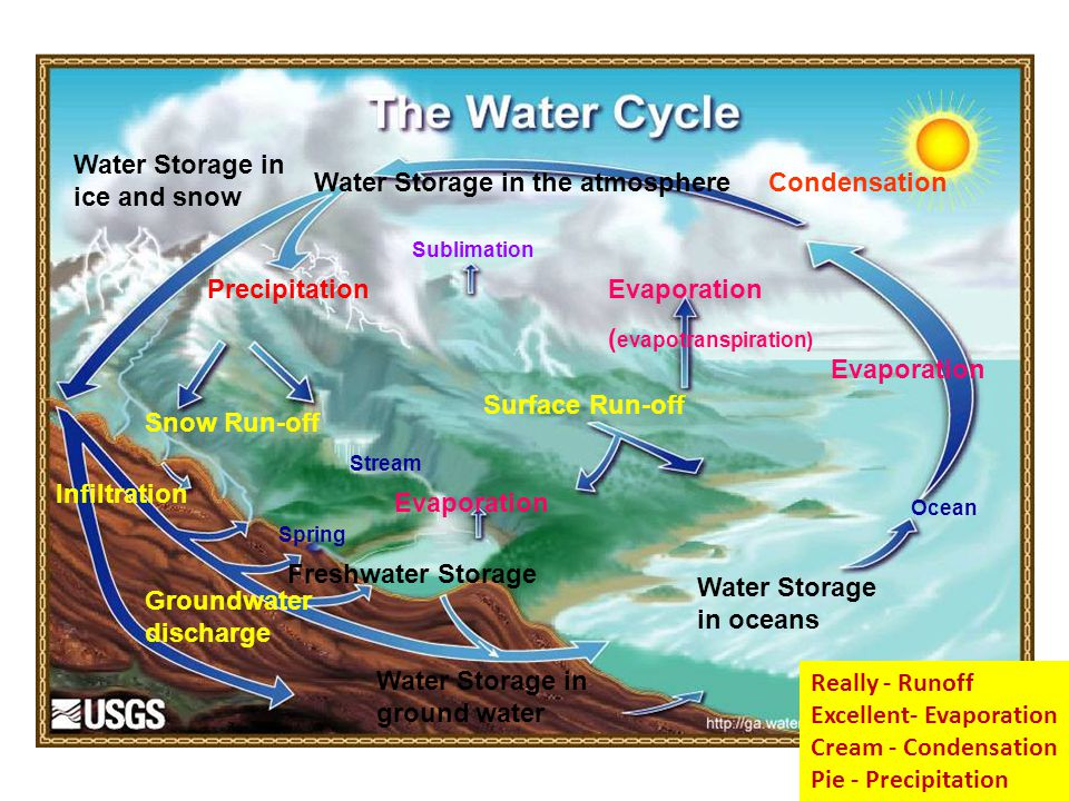 Evaporation ( evapotranspiration) Evaporation Sublimation Condensation Precipitation Water Storage in oceans Water Storage in ice and snow Water Storage in the atmosphere Water Storage in ground water Freshwater Storage Snow Run-off Surface Run-off Groundwater discharge Infiltration Spring Stream Ocean Really - Runoff Excellent- Evaporation Cream - Condensation Pie - Precipitation