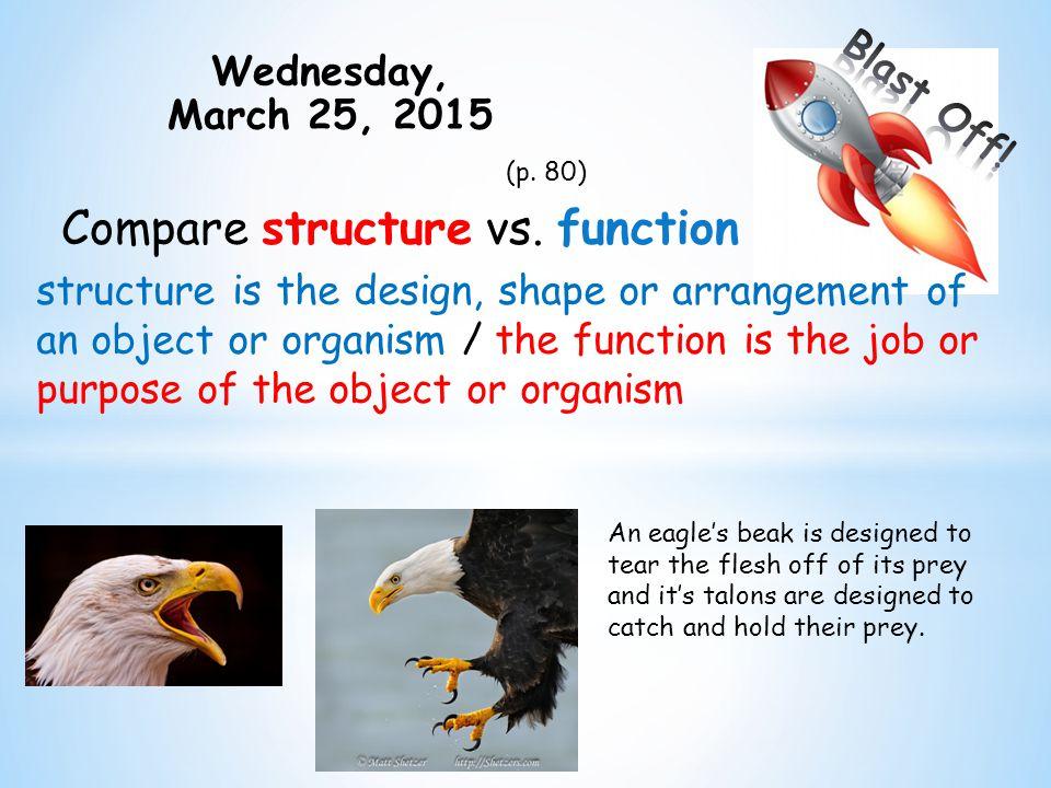 Thursday, March 26, 2015 (p.82) What is a niche.