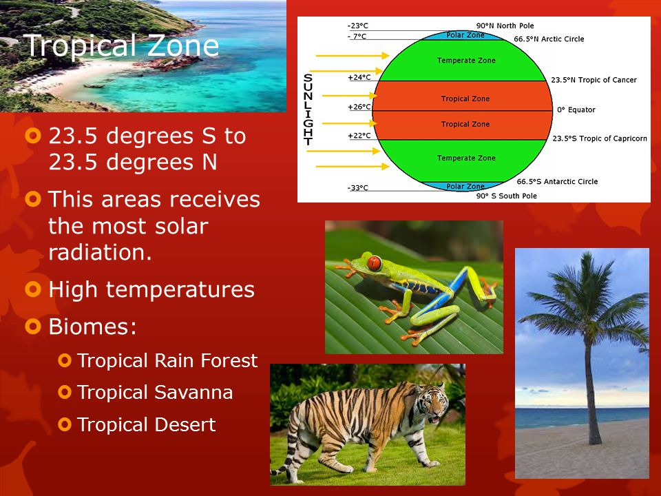 Tropical Zone  23.5 degrees S to 23.5 degrees N  This areas receives the most solar radiation.