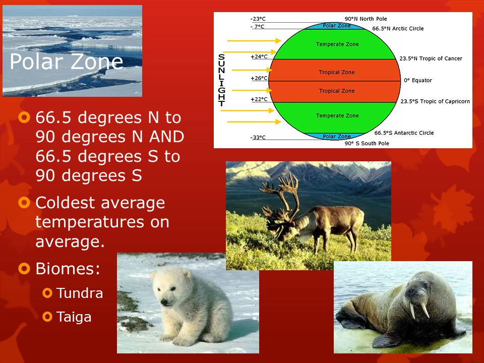 Polar Zone  66.5 degrees N to 90 degrees N AND 66.5 degrees S to 90 degrees S  Coldest average temperatures on average.
