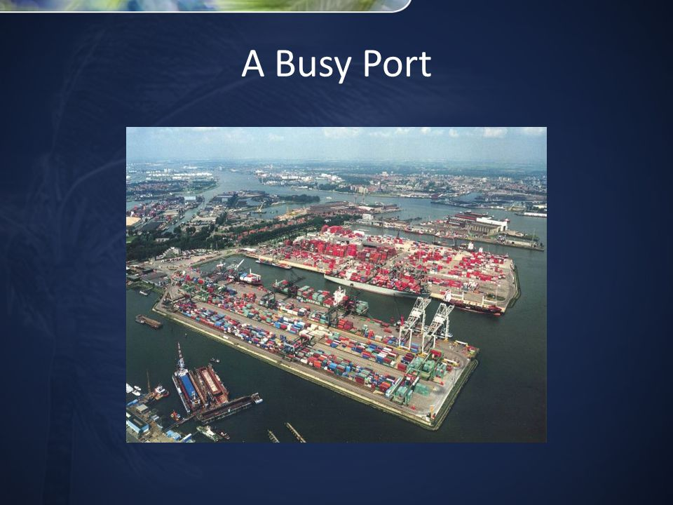 A Busy Port
