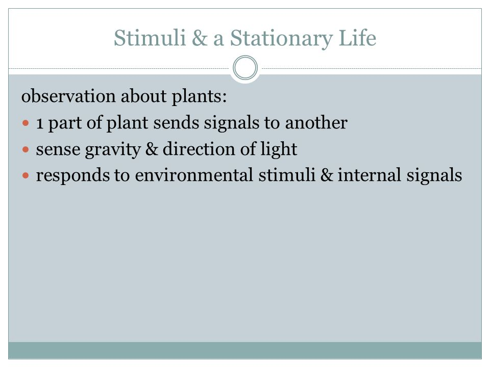 Stimuli & a Stationary Life observation about plants: 1 part of plant sends signals to another sense gravity & direction of light responds to environm