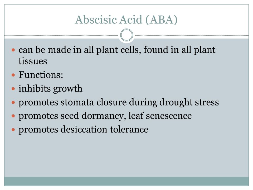 Abscisic Acid (ABA) can be made in all plant cells, found in all plant tissues Functions: inhibits growth promotes stomata closure during drought stre