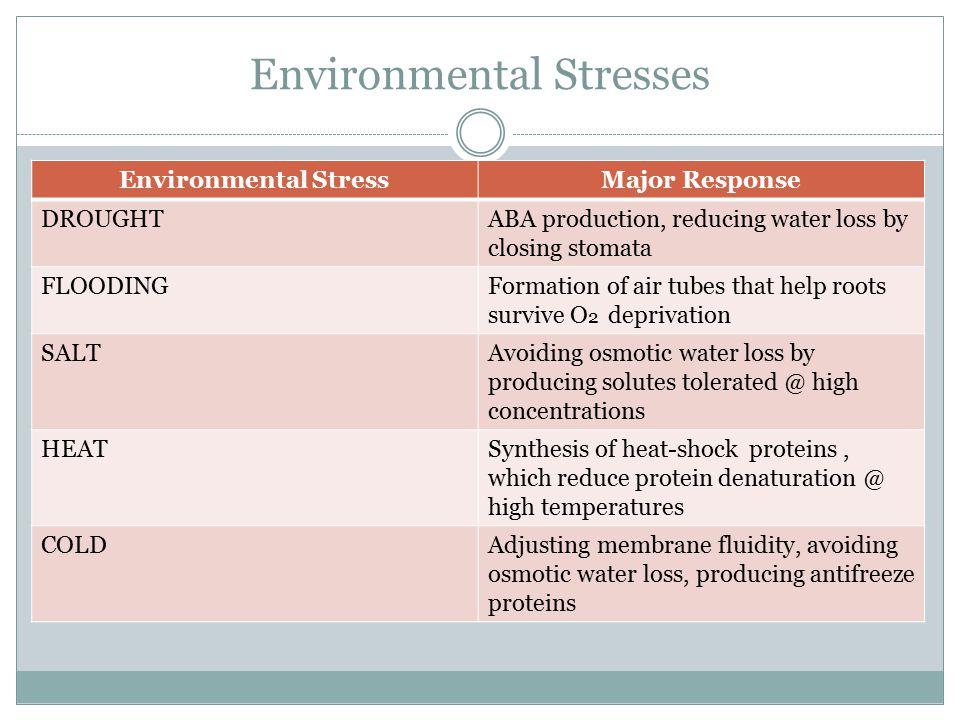 Environmental Stresses Environmental StressMajor Response DROUGHTABA production, reducing water loss by closing stomata FLOODINGFormation of air tubes