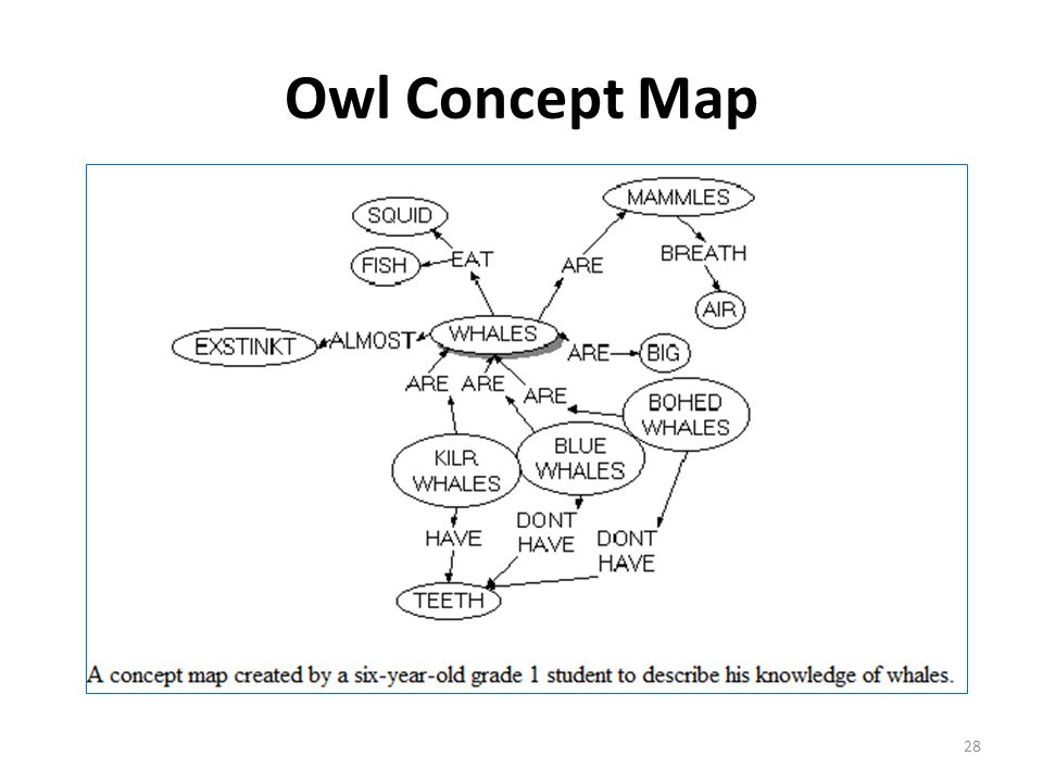 Owl Concept Map 28