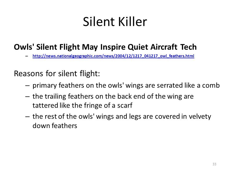 Silent Killer Owls' Silent Flight May Inspire Quiet Aircraft Tech – http://news.nationalgeographic.com/news/2004/12/1217_041217_owl_feathers.html http