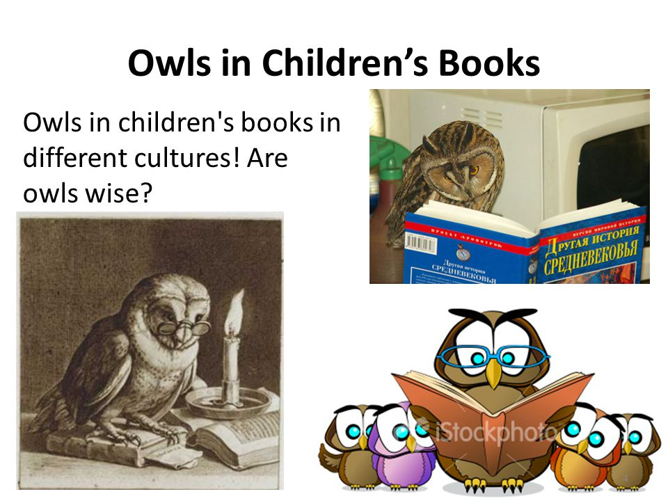 Owls in Children's Books Owls in children's books in different cultures! Are owls wise? 4