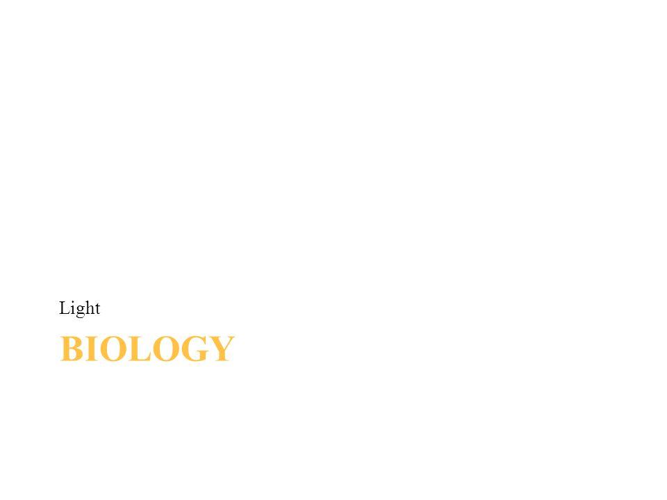 BIOLOGY Light